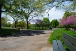 Sunny McCarren Park